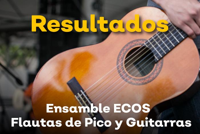 Resultados: ECOS música para la paz Ensamble Estatal de Flautas de Pico y Guitarras 2019