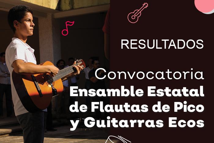 Resultados de la convocatoria para el Ensamble de Flautas de Pico y Guitarras