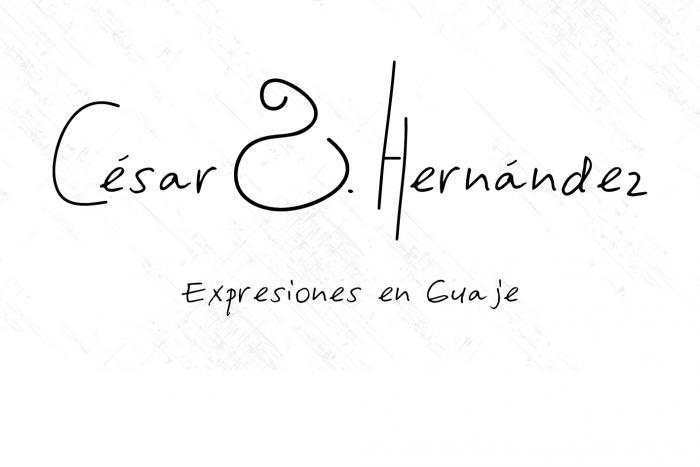 Expresiones en  Guaje